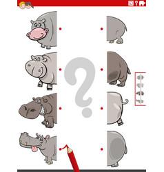 Match halves pictures with hippopotamus vector