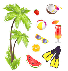 Summer and items collection vector