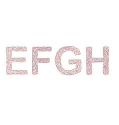 Varicolored letters E-H vector
