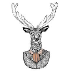 Cartoon hand drawn deer hipster in suit vector