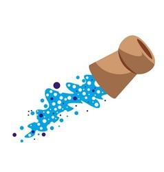 Champagne cork vector image