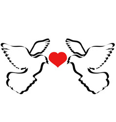 Doves flying with heart vector