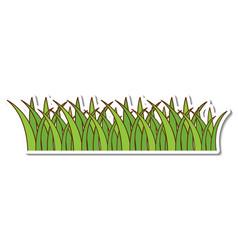 geen grass sticker on white background vector image