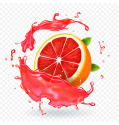 Grapefruit juice splash fruit fresh realistic icon vector