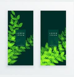 leaf nature verticle banner card vector image