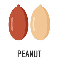 peanut icon flat style vector image