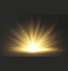 sunlight special lens flash light effect on vector image