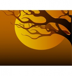 tree branch at sunset vector image