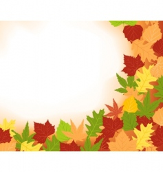colorfull frame of fall leaves vector image vector image