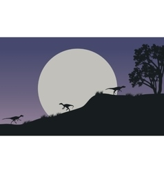 At night Eoraptor in hills scnery silhouette vector image vector image