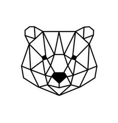 Head of bear vector