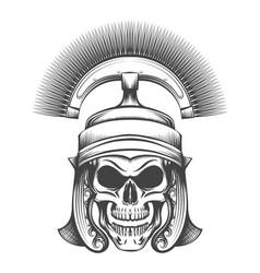 Skull in rome empire centurion helmet vector