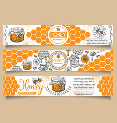 Bee natural honey hand drawn horizontal vector