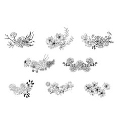 hand drawn floral borders vector image
