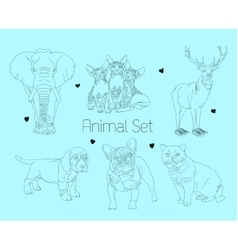 line animal set vector image