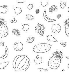 Pattern seamless fruits line doodle plant vector