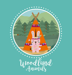 rabbit woodland animals vector image