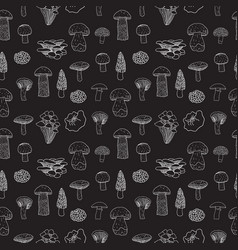 Seamless pattern of edible mushrooms for vector