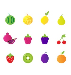 Tropical berries fruit icons vector