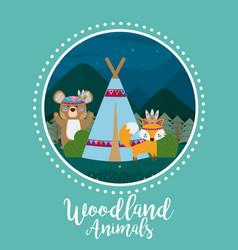 Bear and fox woodland animals vector