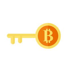 bitcoin key symbol graphic vector image