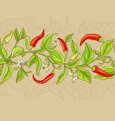 Cayenne pepper pattern vector