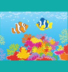 Colorful fishes on a reef vector