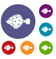 Flounder fish icons set vector