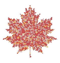 Maple leaf isolated dot abstract design symbol vector image