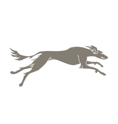 Silhouette of running dog saluki breed vector