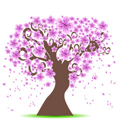 cherry tree background vector image