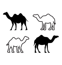 camel icon design set bundle template isolated vector image
