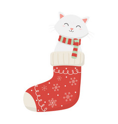 cat coming out sock celebration merry christmas vector image
