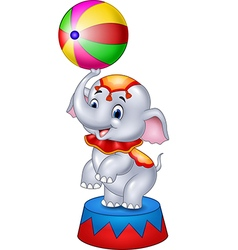 Cute Circus elephant with a striped ball stands vector