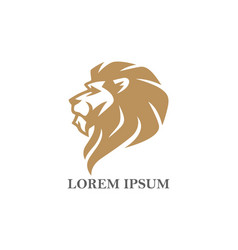 gold angry lion head logo design vector image