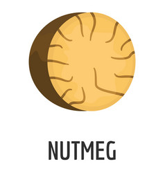 nutmeg icon flat style vector image