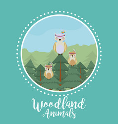 Owls woodland animals vector