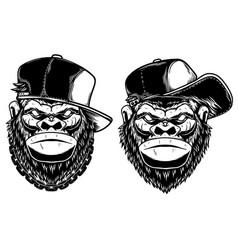 set head angry gorilla with baseball cap vector image