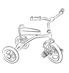 sketch of children bicycle vector image