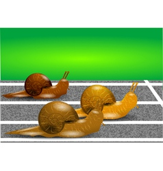 Snails on a racetrack vector