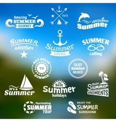 Summer element label set vector image