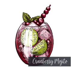 cranberry mojito with lime and berries vector image vector image