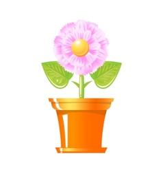 pink flower in pot vector image