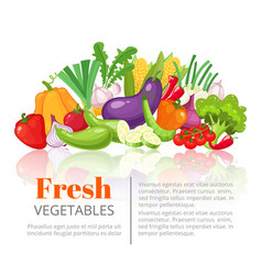 vegetables posterscientific article heading or vector image vector image