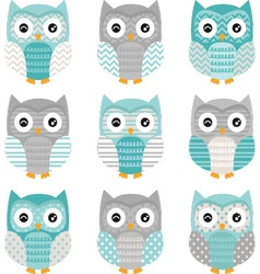 Aqua Grey Cute Owl Collections vector