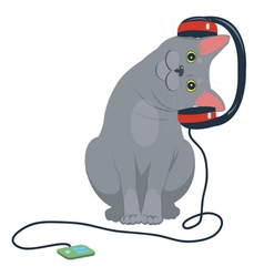 cat music headphones vector image