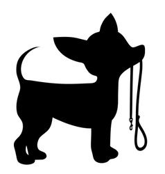 Chihuahua Leash vector