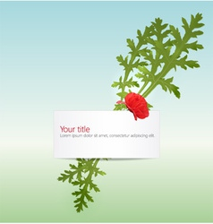 spring banner with poppy vector image