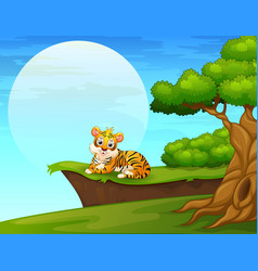 Cartoon tiger lay down near the cliff vector