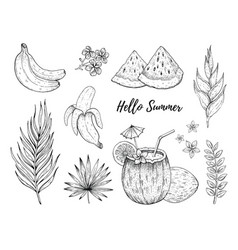 Hello summer tropic fruit and flower stickers vector